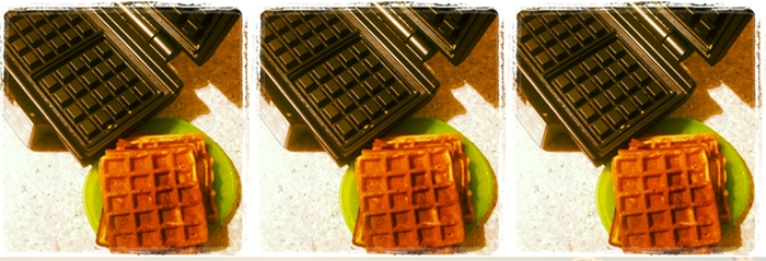 Lowcarb Lifestyle Waffeln ohne Carbs